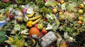 CONGRESS 2019: Three ways to fight or control Food Waste